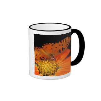 Detail of captive gulf fritillary butterfly on coffee mugs