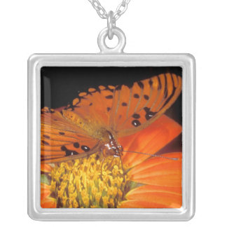 Detail of captive gulf fritillary butterfly on square pendant necklace