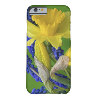 Detail of daffodil and hyacinth flowers. Credit Barely There iPhone 6 Case