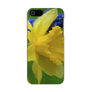 Detail of daffodil and hyacinth flowers. Credit Incipio Feather® Shine iPhone 5 Case