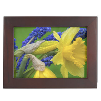 Detail of daffodil and hyacinth flowers. Credit Keepsake Box