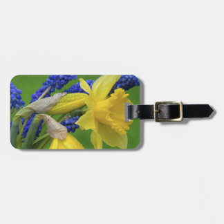 Detail of daffodil and hyacinth flowers. Credit Luggage Tag