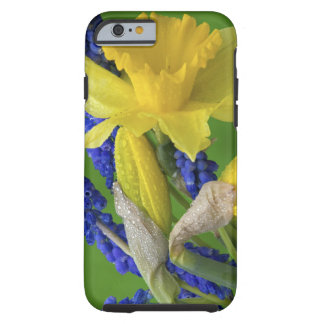 Detail of daffodil and hyacinth flowers. Credit Tough iPhone 6 Case