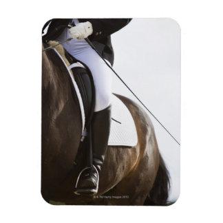 detail of female dressage rider on horse magnet