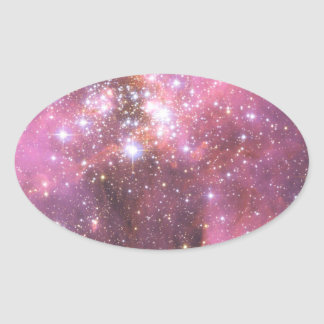Detail of NGC 346 in Pink Oval Sticker
