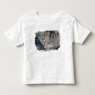 Detail of reliefs from Chamber Toddler T-Shirt