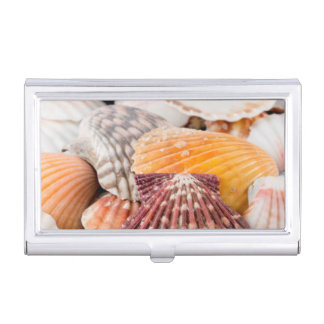 Detail Of Seashells From Around The World 2 Business Card Holder