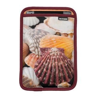 Detail Of Seashells From Around The World 2 iPad Mini Sleeve