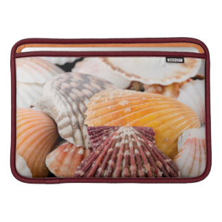 Detail Of Seashells From Around The World 2 MacBook Sleeve