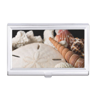 Detail Of Seashells From Around The World Business Card Holder