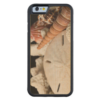 Detail Of Seashells From Around The World Carved Maple iPhone 6 Bumper Case