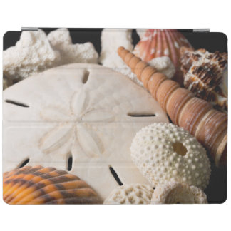 Detail Of Seashells From Around The World iPad Cover