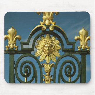 Detail of the Grille d'honneur Mouse Mat