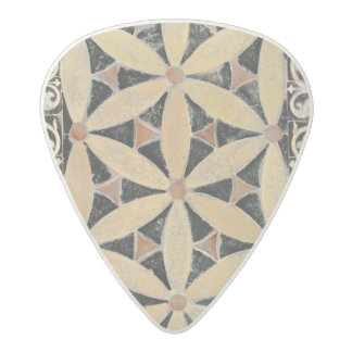 Detail of the pavement acetal guitar pick