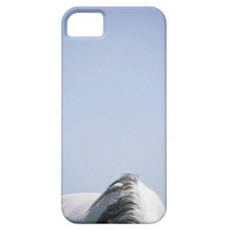detail of white horse barely there iPhone 5 case