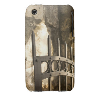Detail of wrought iron gate in San Antonio iPhone 3 Cases