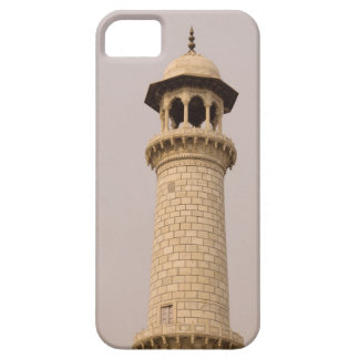 Detail, Taj Mahal, Agra, Uttar Pradesh, India iPhone 5 Cases