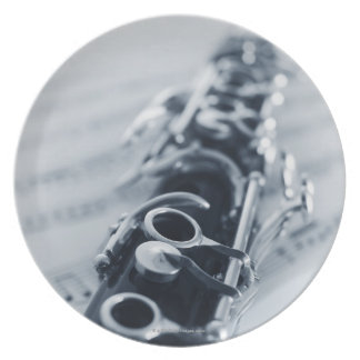 Detailed Clarinet Plate