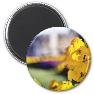 Detailed Picture Of A Yellow Flower With The Town 6 Cm Round Magnet