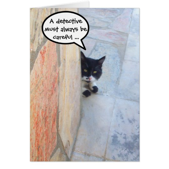 DETECTIVE CAT BEHIND THE STONE WALL / Father's