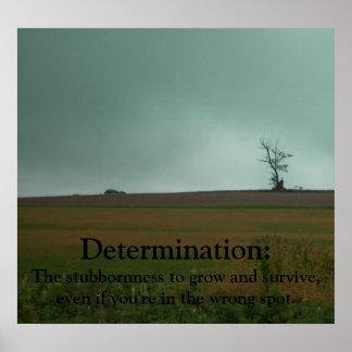 Determination Demotivational Poster