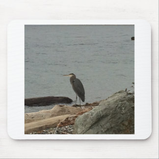 Determination of the Egrets Mouse Pads