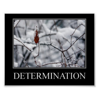 Determination - The one lone leaf Poster
