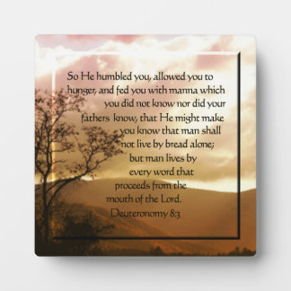 Deuteronomy 8:3 plaque