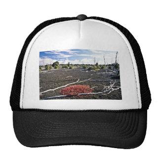 Devastation Area - Kiluaea Crater Hawaii Hats