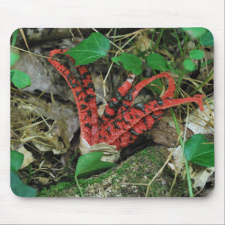 Devil's fingers mouse mat
