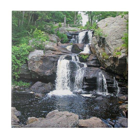 Devil's Hopyard Waterfall Trivet Small Square Tile