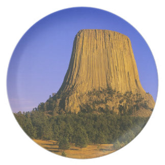 Devils Tower National Monument in Wyoming Plate