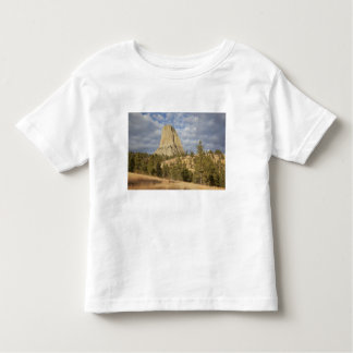 Devils Tower National Monument Toddler T-Shirt