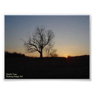 Devil's Tree Poster