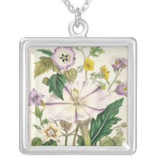 Devil's Trumpet, plate 46 from 'The Ladies' Silver Plated Necklace