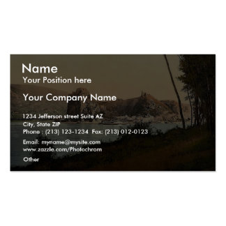 Devin and the Danube River, southwest Slovakia, ne Pack Of Standard Business Cards