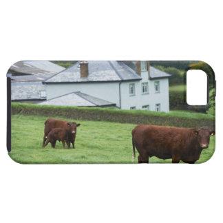 Devon, England Tough iPhone 5 Case