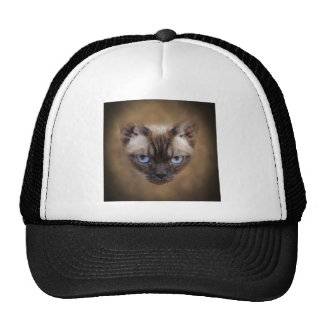 Devon Rex cat face Cap