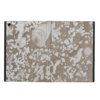 Devonian Fossil Brown & White iPad Air Case