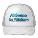 Devoted To Jesus in Aurora ILL Mesh Hat