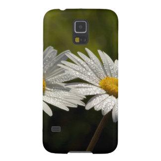 Dew Bejeweled Ox-eye Daisy Wildflowers Samsung Galaxy Nexus Cases