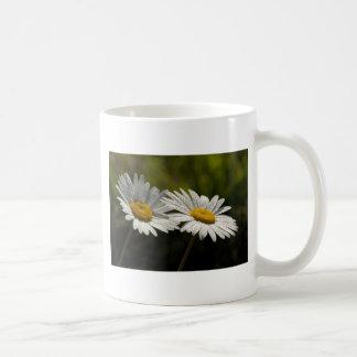 Dew Bejeweled Ox-eye Daisy Wildflowers Mug