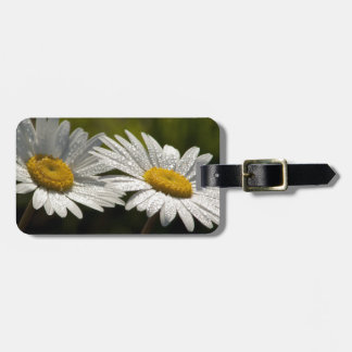 Dew Bejeweled Ox-eye Daisy Wildflowers Tag For Bags