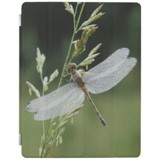 Dew covered Darner Dragonfly iPad Cover