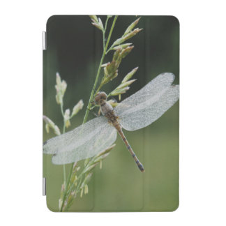 Dew covered Darner Dragonfly iPad Mini Cover