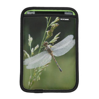 Dew covered Darner Dragonfly iPad Mini Sleeve