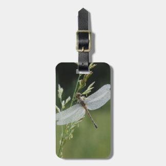 Dew covered Darner Dragonfly Luggage Tag
