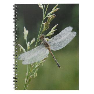 Dew covered Darner Dragonfly Notebook
