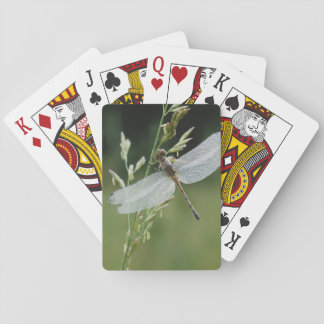 Dew covered Darner Dragonfly Playing Cards