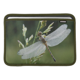 Dew covered Darner Dragonfly Sleeve For MacBook Air